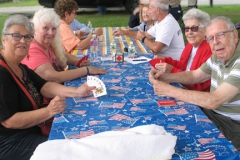 Picnic participants playing card games